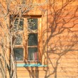 Shade from Tree on Wooden Wall — Stockfoto