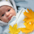 Infant and autumn yellow maple leaf — Stock Photo #1415628