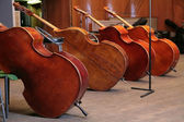 Vintage bass viols — Stock Photo