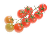 Vegetables, Tomatoes Cherry — Stock Photo