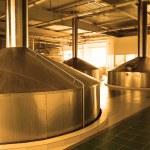 Modern brewery - workshop with steel fermentation vats — Stock Photo #1189005