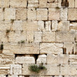 wailing wall — Stock Photo #1190050