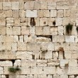 Western wall — Stock Photo #1190068