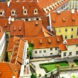 Tiled roofs — Stockfoto