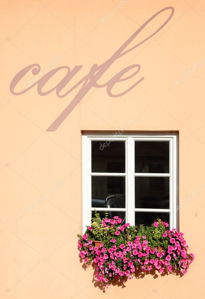Wall of cafe with window and flowers — Stock Photo #1191452