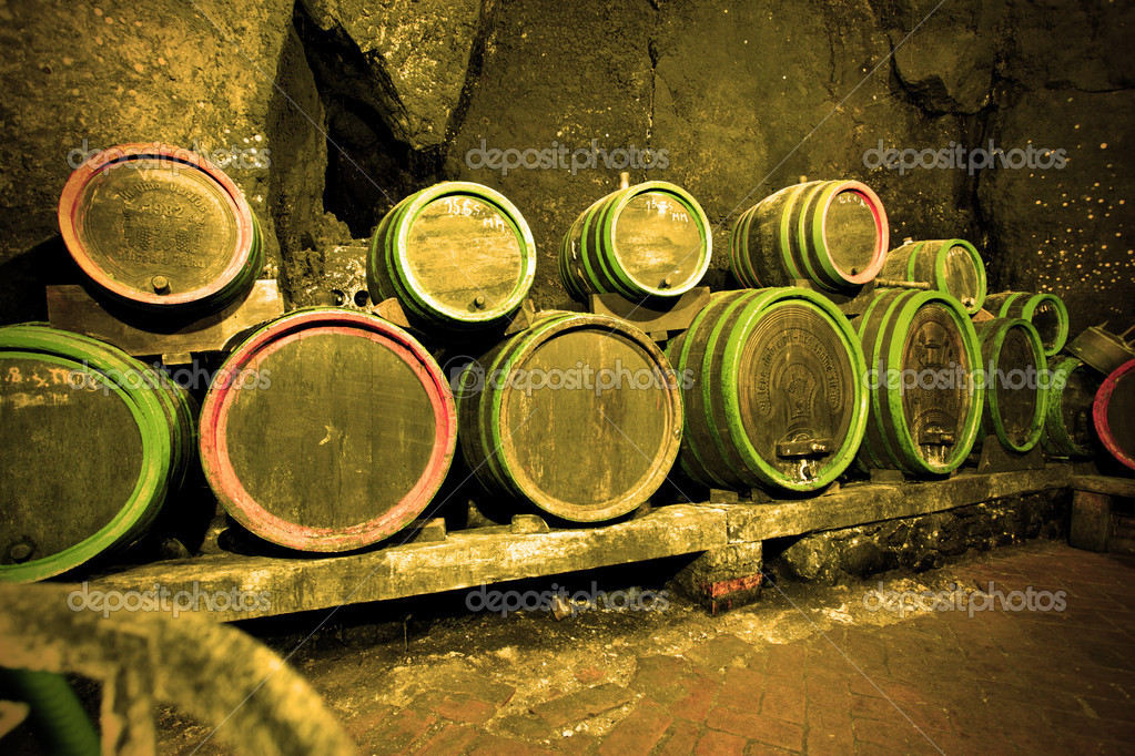 Wine barrels in cave in a row — Stock Photo #1191769