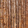 Wooden fence — Stock Photo #1415989
