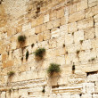 Western wall — Stock Photo #1416811