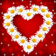 Daisy Heart - Stock Photo