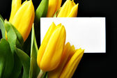 Tulips with blank card — Stock Photo