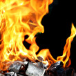 Stock Photo: Burning fire and charcoal