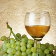 Stock Photo: Bunch of grapes and white wine