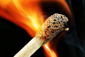 Burning match macro — Stock Photo