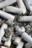 Sigarettes stubs — Stock Photo