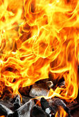Burning fire and charcoal — Stock Photo