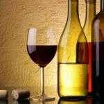 Wine-testing — Stock Photo