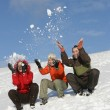 Friends have fun in winter — Stock Photo #1440559