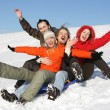 Friends to drive in a sledge — Stock Photo