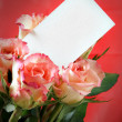 Roses with blank card — Stock Photo