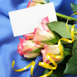 Roses over blue silk background — Stock Photo