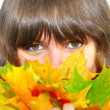 Girl with maple leaves — Stock Photo #1441622