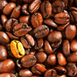 Golden coffee bean - Stock Photo