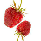 Two strawberry — Stock Photo