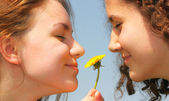 Girls with dandelion — Stockfoto