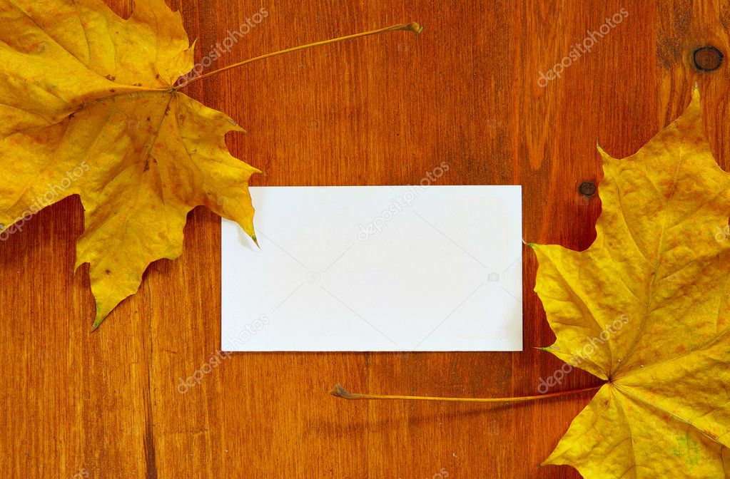 Maple leaves and blank card with space for your own text — Stock Photo #1441529