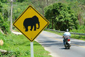 Elephant sign — Fotografia Stock