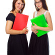 Young business women consalting - Foto Stock