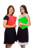 Young business women consalting — Stock Photo