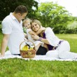 Family having fun on the picnic — Stock Photo