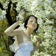 Bride in the spring garden - Stock Photo