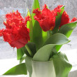 Red tulips on the windowsill — Stock Photo