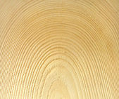 Wood, texture — Stock Photo