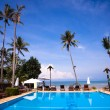 Pool and palms on sea shore — Stock Photo