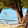 Nice straw hammock on the beach — Stock Photo #1286837
