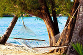 Nice straw hammock on the beach — Stock Photo