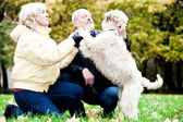 Family embrace irish soft coated wheaten — Stock Photo