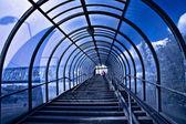 Escaleras y corredor azul — Foto de Stock
