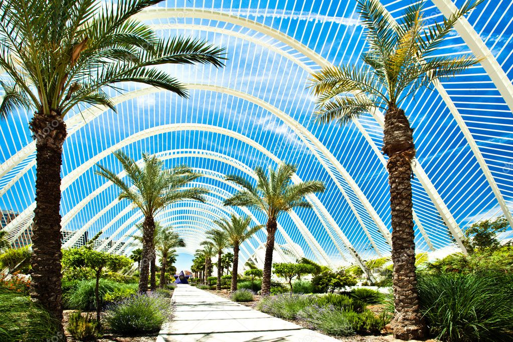 Beautiful parkway with palms and bushes  in territory of the City of Arts and Science, Valencia, Spain — Stock Photo #1288966