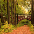 Brick bridge in autumn forest — Stock Photo #1329525