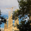 Sagrada familia in Barcelona — Stock Photo