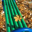 Green bench in the park — Stock Photo