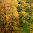 Autumn landscape in Moscow - Stock Photo