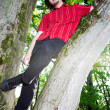 Boy seat on the tree — Stock Photo
