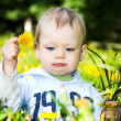 Baby boy play with dandelions — Stock Photo