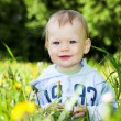 Smiling baby boy play with dandelions — Stock Photo