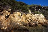 Landscape with rocks 2 — Stockfoto